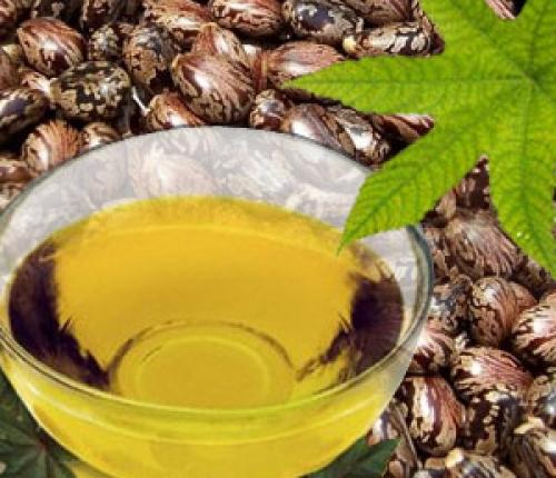 Mẹo dưỡng cho vùng lông mày mọc đều và đen rậm